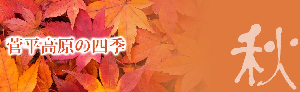菅平高原の秋