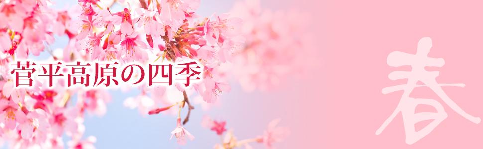菅平高原の春